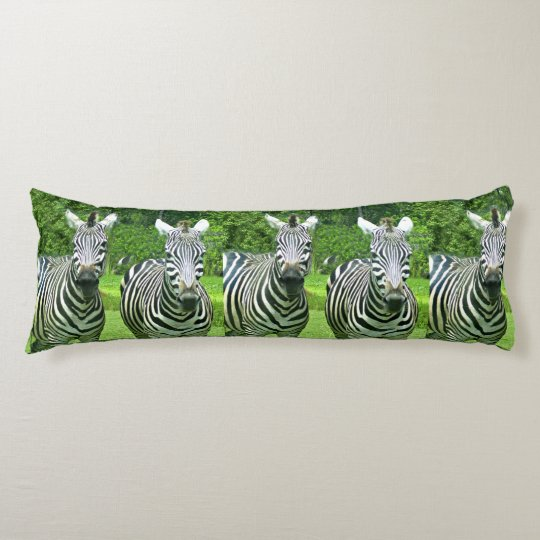 5 cute zebras body pillow