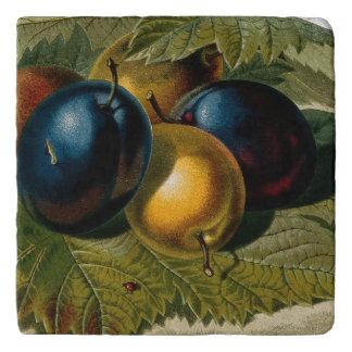 5 vintage plums painting trivet