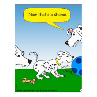 613 dalmation cat cartoon postcard