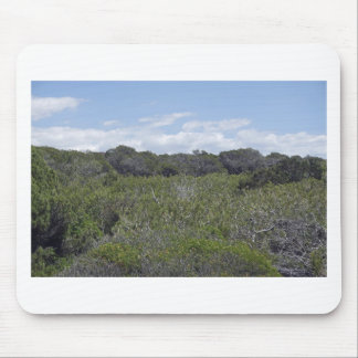 64-SOL16-170-3268 MOUSE PAD