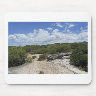64-SOL16-171-3269 MOUSE PAD