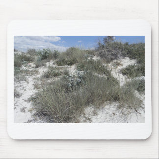 64-SOL16-177-3276 MOUSE PAD