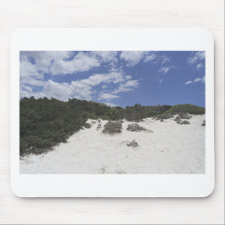 64-SOL16-179-3281 MOUSE PAD