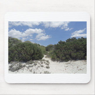 64-SOL16-185-3288 MOUSE PAD