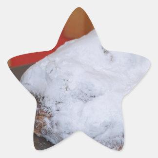 67-XMAS16-06-8156 STAR STICKER