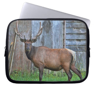 6 Point Bull Elk Photo Laptop Sleeve