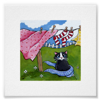 """6"""" x 6"""" 