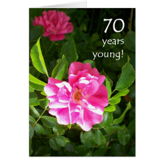 70th Birthday Card - Pink Roses