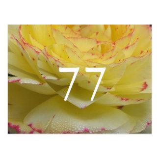 77th Birthday Postcard