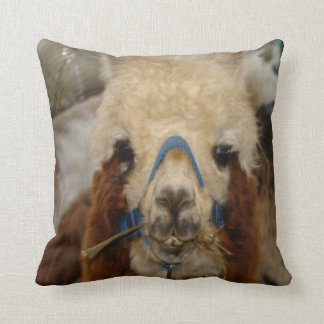 #7-Llamas & Alpacas Throw Pillow