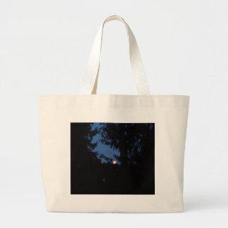7th February 2012 - Full Moon - Ice Moon Bags