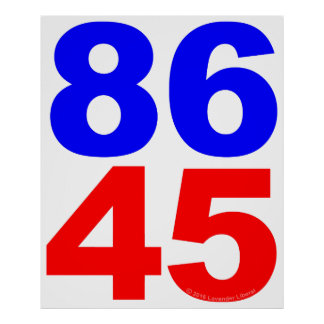 86 45 Protest Poster