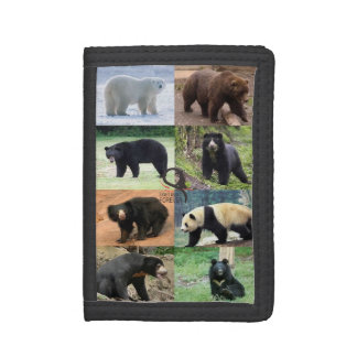 8 bears of the world trifold wallets