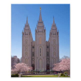 8 X 10 Salt Lake Temple with trees in pink blooms. Photo Print