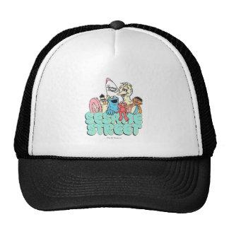 90's Sesame Street Vintage Surf Trucker Hat