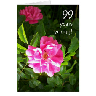 99th Birthday Card - Pink Roses