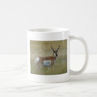 A0001 Pronghorn Antelope Buck Coffee Mug
