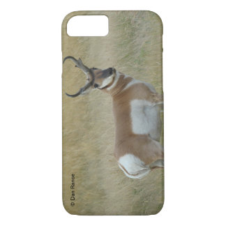 A0001 Pronghorn Antelope Iphone 8/7 phone case