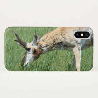 A0011 Pronghorn Antelope Iphone 8/7 phone case