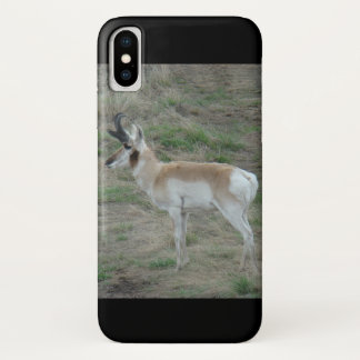 A0026 Pronghorn Antelope Iphone 8/7 phone case