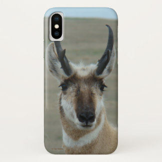 A0030 Pronghorn Antelope Iphone 8/7 phone case