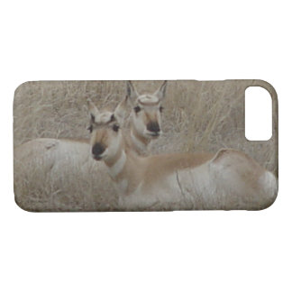 A0041 Pronghorn Antelope Iphone 8/7 phone case