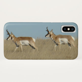 A0046 Pronghorn Antelope Iphone 8/7 phone case