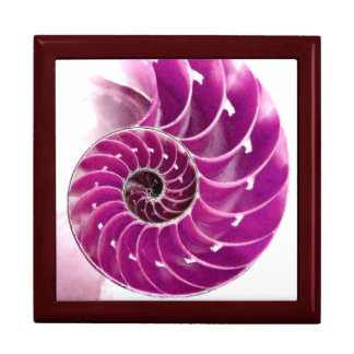 A01. Chambered Nautilus Tiled Box.1 Gift Box