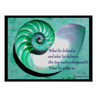A01 Nautilus Shell Poster with Inspirational Quote