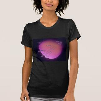 A1 Blue Geese sun JPEG T-shirts