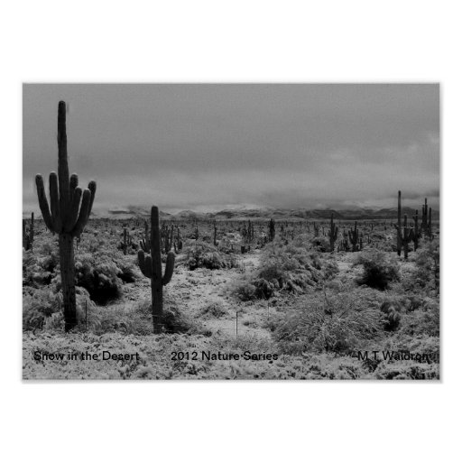 A 1 Print Snow in The Desert  Nature Series 2012