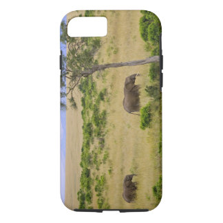 A African Elephant grazing in the fields of the 2 iPhone 7 Case