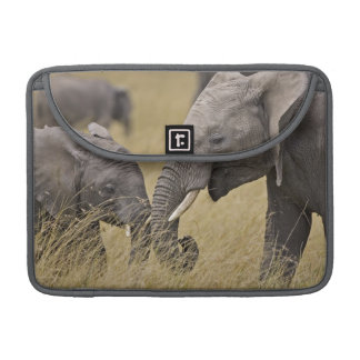 A African Elephant grazing in the fields of the Sleeve For MacBook Pro
