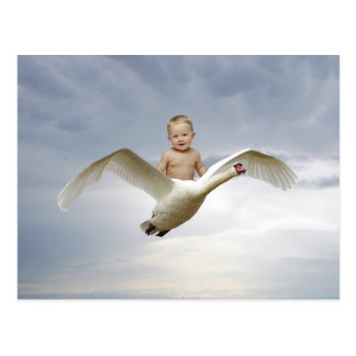A baby and the swan sky postcard