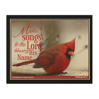 A beautiful Cardinal on your wall! Wood Canvas