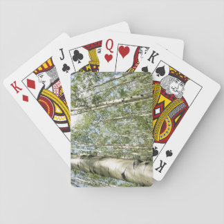 A beautiful day in the forest playing cards