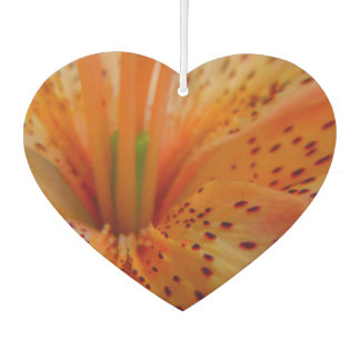 A Beautiful Lily in Pink Air Freshener