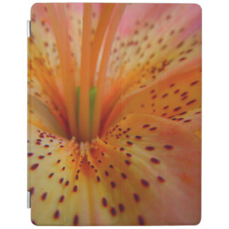 A Beautiful Lily in Pink iPad Cover