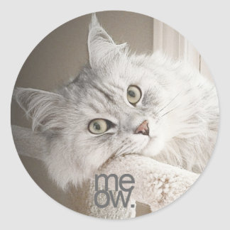 A Beautiful Meow Stickers