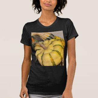 a beautiful pumpkin shirt
