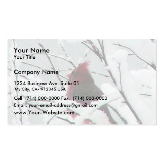 A Beautiful Red Cardinal In The Bushes Covered Wit Pack Of Standard Business Cards