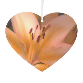 A - Beautiful Shaded Orange Lily Air Freshener