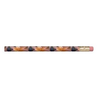A - Beautiful Shaded Orange Lily Pencil