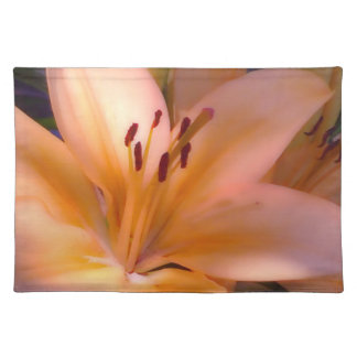 A - Beautiful Shaded Orange Lily Placemat
