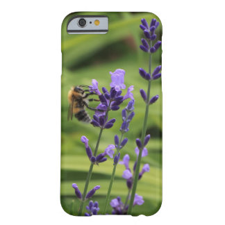 A bee on lavender flower barely there iPhone 6 case