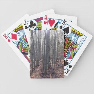 A beech forest in fall. bicycle playing cards