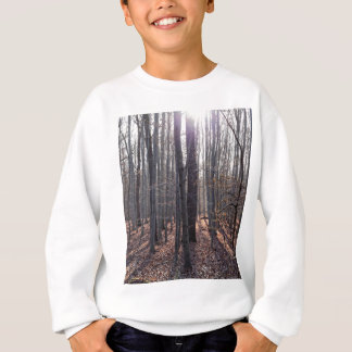 A beech forest in fall. sweatshirt