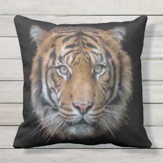 A Bengal Tiger Throw Pillow