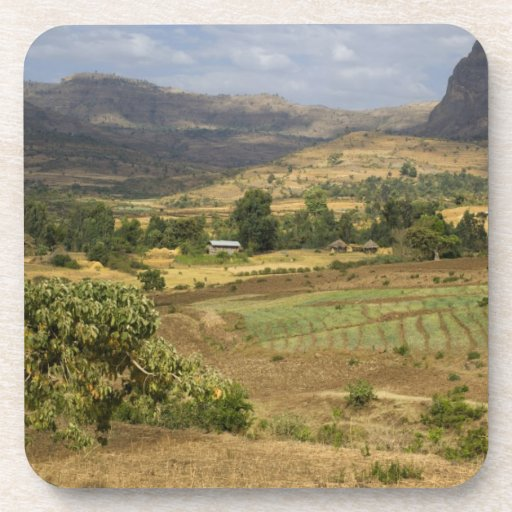 A big scenic view of a big rock mountain drink coasters