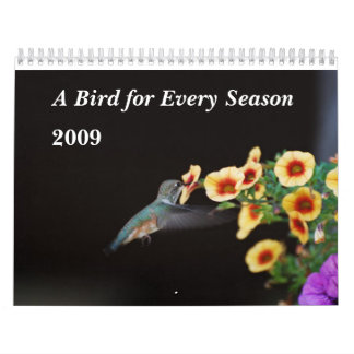 A Bird for Every Season Wall Calendar